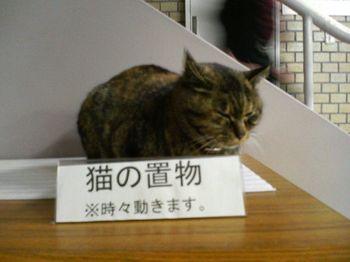 猫の置物.jpg