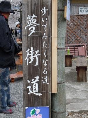 01 がいせん桜 夢街道.JPG