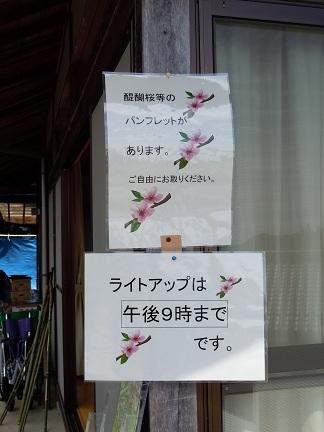 05 醍醐桜 パンフレット.JPG