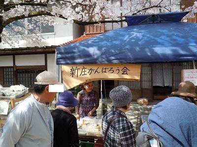 08 がいせん桜 新庄がんばろう会1.JPG